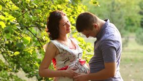 Pregnant woman and her husband hugging in the Park stock footage