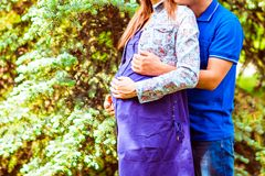 Pregnant woman and her husband in the park Stock Photography