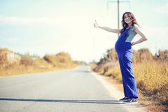 Pregnant woman hitchhiking the car royalty free stock images