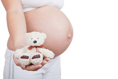 Pregnant woman hold in hand white toy bear Stock Photos