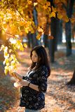 Pregnant Woman Hold Tree Branch In Park Royalty Free Stock Photo