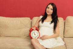 Pregnant woman holding alarm clock Royalty Free Stock Photo