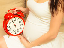 Pregnant woman holding alarm clock Royalty Free Stock Image