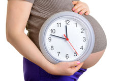 Pregnant woman holding clock. . It's time. royalty free stock image