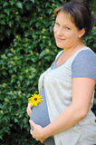 Pregnant woman holding her belly Stock Photography