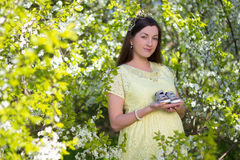 Pregnant Woman Holding Little Shoes In Blooming Cherry Garden Stock Photos