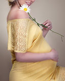 Pregnant woman holding spring flowers Royalty Free Stock Photography