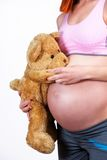 Pregnant woman holing teddy bear Royalty Free Stock Image
