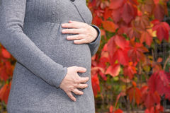 Pregnant woman,isolated Royalty Free Stock Images