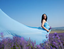 Pregnant woman in lavender Stock Photo