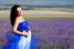 Pregnant woman in lavender Royalty Free Stock Photo
