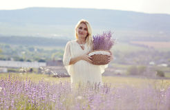 Pregnant woman in a lavender field Stock Photography