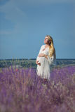Pregnant woman in a lavender field Stock Photos