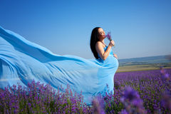 Pregnant woman on lavender field Stock Image