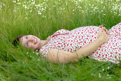 Pregnant woman lie in chamomile Stock Photos