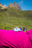 Pregnant woman lying on a grass with baby shoes on her belly Royalty Free Stock Photos