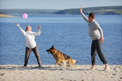 Pregnant woman and man with dog Stock Photo