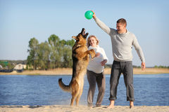 Pregnant woman and man with dog Stock Photos