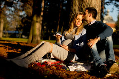 Pregnant woman and man sitting under tree Stock Images