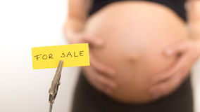Baby for sale Stock Photography