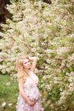 Pregnant woman model in floral dress standing in blooming garden. Pregnant belly hand. Beautiful future mother. Tree blooms white flowers. Flower garden Stock Photos