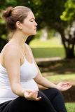 Pregnant woman mother belly relaxing park yoga lotus Royalty Free Stock Images