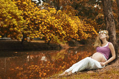 Pregnant woman in nature in autumn Stock Photography