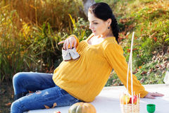 Pregnant woman on the nature, autumn time Stock Photos