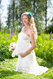 Pregnant woman on the nature Stock Photos