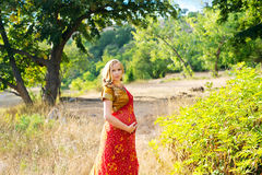 Pregnant woman in the park.Indian girl in dress Stock Photo