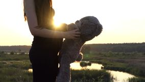 4k - Pregnant woman play with bear at sunset. Pregnant woman play with bear at sunset. Beautiful action in 4k stock footage