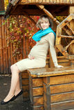 Pregnant woman posing in an old wooden well Royalty Free Stock Images