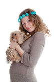 The pregnant woman with a puppy Stock Image