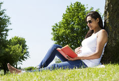Pregnant Woman Reading stock photo