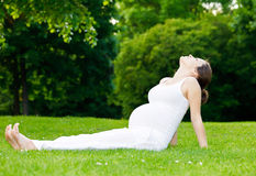 Pregnant woman relaxing in the park. Beautiful pregnant woman relaxing in the park Stock Images