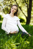 Pregnant woman relaxing in the park Royalty Free Stock Photography