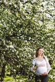 Pregnant woman relaxing in the park Royalty Free Stock Images
