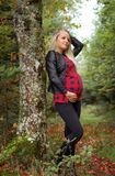 Pregnant  woman resting in autumn forest Stock Photography