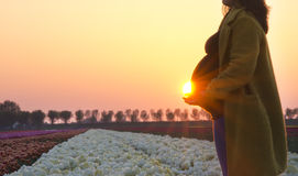 A pregnant woman`s silhouette stock photography