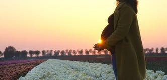 A pregnant woman`s silhouette stock photo