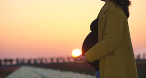 A pregnant woman`s silhouette stock images