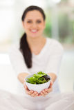 Pregnant woman salad Royalty Free Stock Photography
