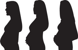 Pregnant woman silhouette Royalty Free Stock Photography