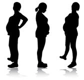 Pregnant woman silhouette Stock Photo