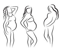 Pregnant woman silhouette, isolated vector symbol Stock Images