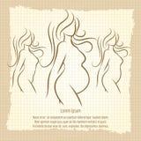 Pregnant woman silhouettes vintage poster Stock Photos