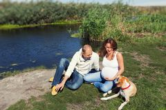 Pregnant woman sitting close to her husband and dog. Picture of a young family sitting relaxed next to their dog in a park stock photo