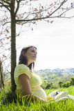 Pregnant Woman Sitting On Grass Royalty Free Stock Photo