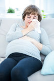 Pregnant woman sitting on a sofa about to sneeze Royalty Free Stock Photography