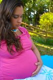 Pregnant Woman. Smiling Pregnant Woman Wearing a Pink Shirt Stock Photography